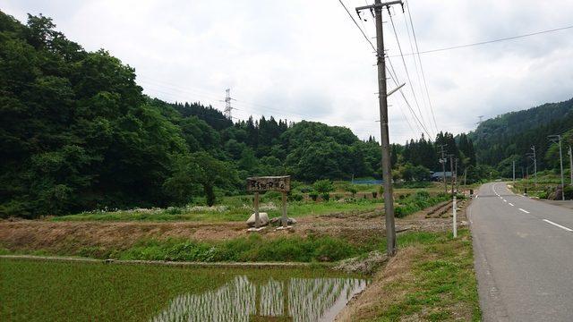 hanesawa11