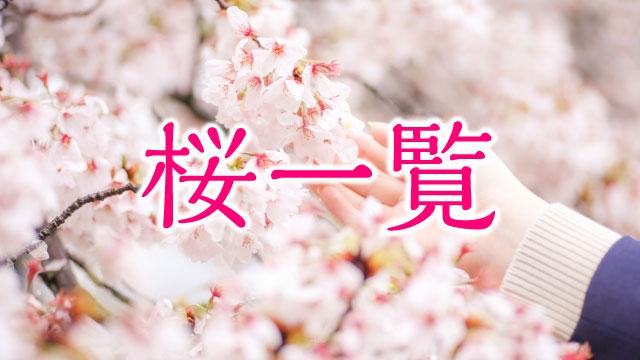 桜一覧:掲載している桜鑑賞スポットまとめ